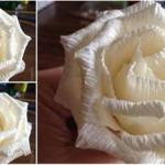 Hướng dẫn làm một bông hoa hồng trắng bằng giấy kép