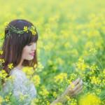 Cánh đồng hoa cải Hội Khê – địa điểm chụp ảnh hoa cải lãng mạn
